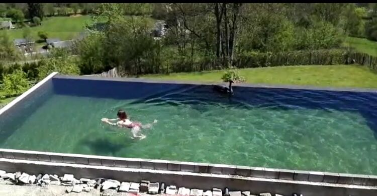 zwemmen ollevier en co